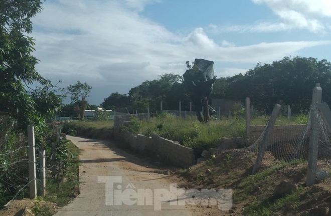 Khánh Hoà: Núi Hòn Rồng tiếp tục bị cày xới để xây dựng trái phép - Ảnh 5.