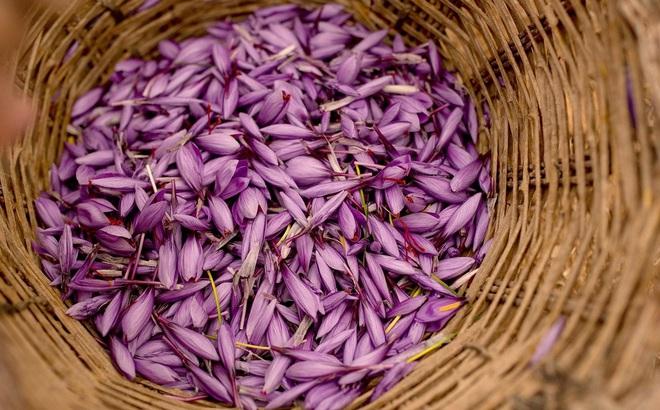 Nhà giàu Việt săn lùng nhụy hoa giá 450 triệu đồng/kg, chuyên gia chỉ rõ: Sẵn trong các thuốc rẻ tiền dễ kiếm!