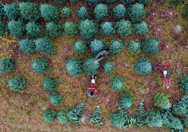 24h qua ảnh: Tuyết đầu mùa phủ trắng Vạn Lý Trường Thành - Ảnh 4.