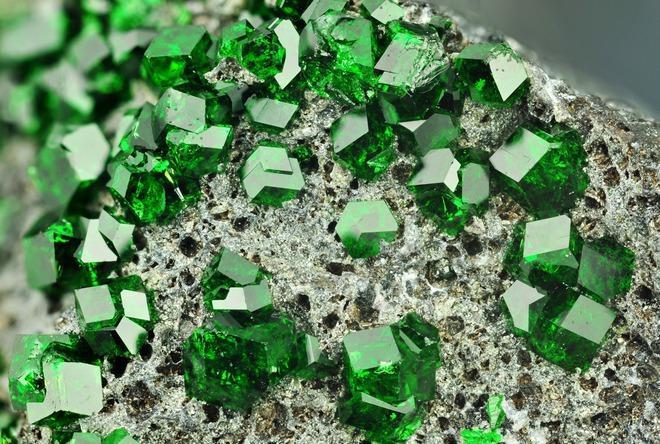 Ngọc lục bảo là một trong những loại đá đắt đỏ và quý hiếm.