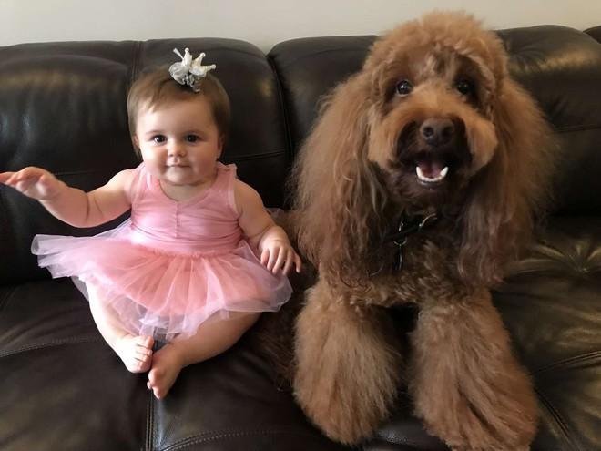 Chó cưng thường lẻn vào phòng con gái nhỏ mỗi tối, bố mẹ kiểm tra camera mới thầm biết ơn con vật - Ảnh 3.