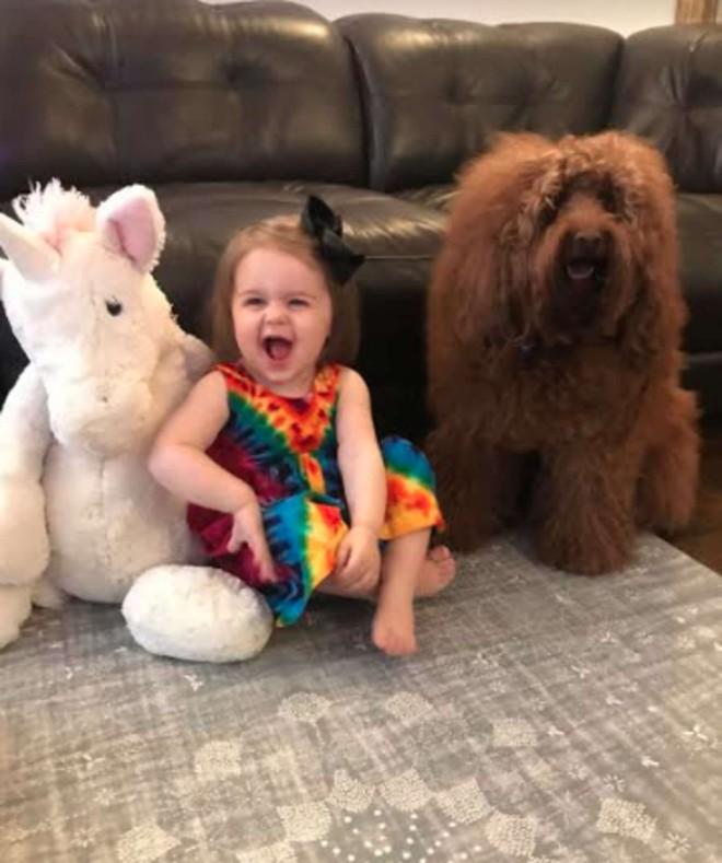 Chó cưng thường lẻn vào phòng con gái nhỏ mỗi tối, bố mẹ kiểm tra camera mới thầm biết ơn con vật - Ảnh 4.