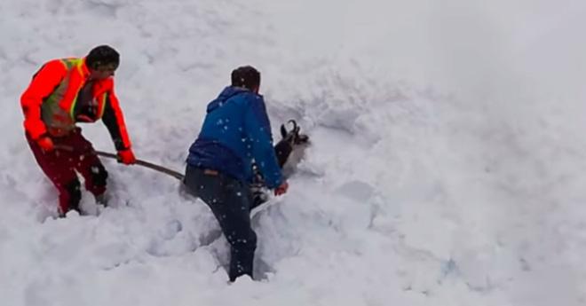 Đoàn tàu rú còi inh ỏi rồi dừng lại, nhân viên lao xuống hối hả cào tuyết và làm nên điều diệu kỳ - Ảnh 3.