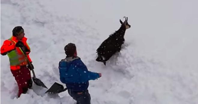 Đoàn tàu rú còi inh ỏi rồi dừng lại, nhân viên lao xuống hối hả cào tuyết và làm nên điều diệu kỳ - Ảnh 4.