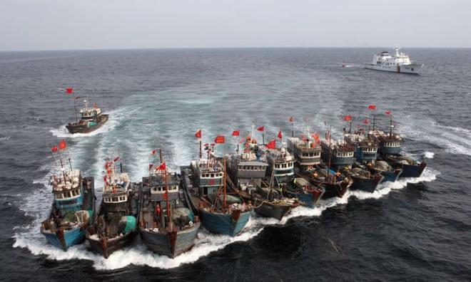 Phía sau đội tàu cá hùng hậu, đầy tham vọng, phát triển như vũ bão của Trung Quốc - Ảnh 3.