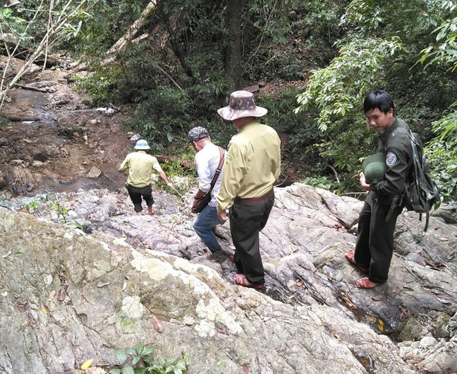Tận thấy hiện trường rừng giáng hương cổ thụ bị tàn phá ở Tây Nguyên - Ảnh 2.