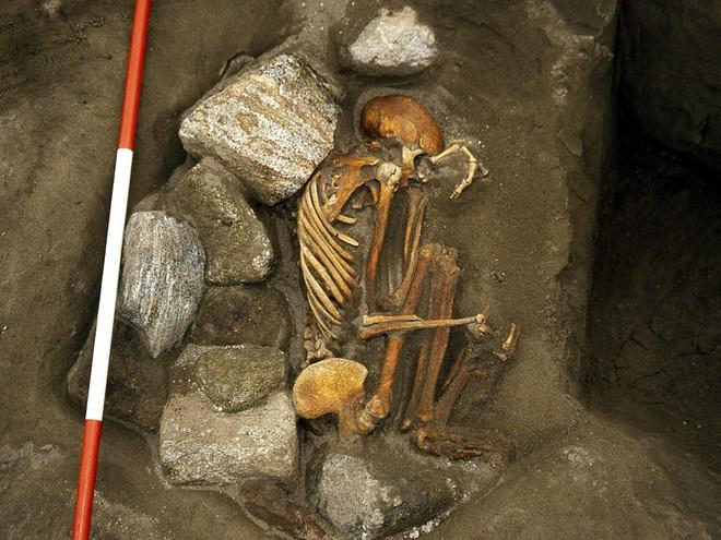 Phát hiện khảo cổ quái dị: Xét nghiệm ADN cho thấy xác ướp 3000 tuổi được chắp vá từ 6 di thể - Ảnh 1.