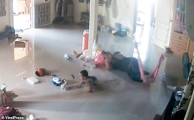 Video: Thót tim cảnh mẹ cứu con trai 1 tuổi khỏi bị rết khổng lồ cắn trong gang tấc