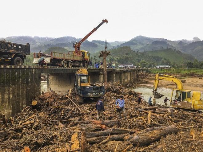 Gỗ khai thác trái phép trôi vây kín chân cầu sau bão số 9 - Ảnh 2.