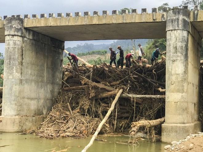 Gỗ khai thác trái phép trôi vây kín chân cầu sau bão số 9 - Ảnh 3.