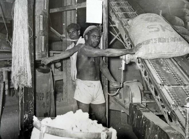 Đá dệt thành vải: Từ vải liệm xác ướp Ai Cập đến vũ khí lợi hại của quân đội Mỹ và thứ chất độc chết người - Ảnh 5.