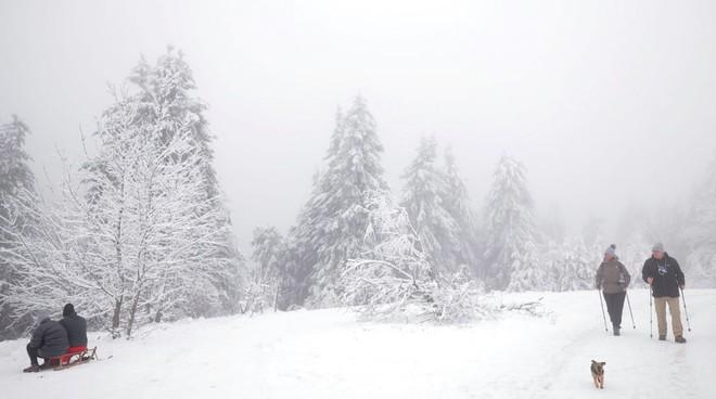 24h qua ảnh: Mọi người tận hưởng mưa tuyết đầu mùa ở Đức - Ảnh 3.