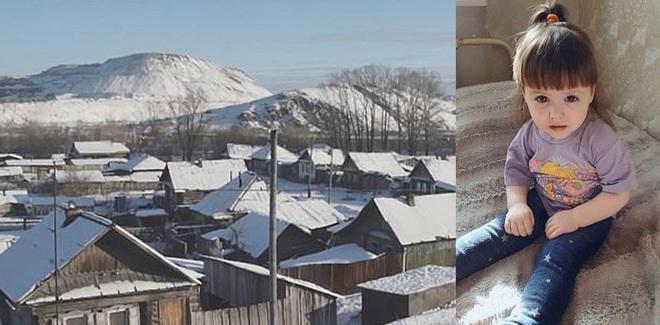Đêm trước trời lạnh âm 20 độ, hôm sau hàng xóm chứng kiến điều kinh hoàng trên hàng rào - Ảnh 7.