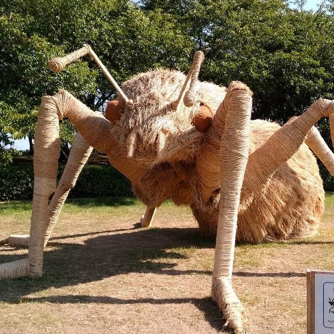 Kinh ngạc loạt quái vật rơm khổng lồ trên cánh đồng Nhật Bản - Ảnh 11.
