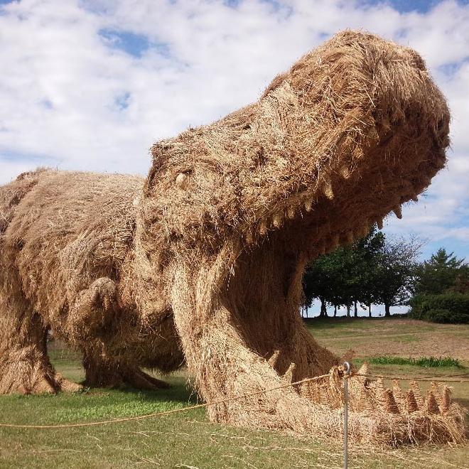 Kinh ngạc loạt quái vật rơm khổng lồ trên cánh đồng Nhật Bản - Ảnh 10.