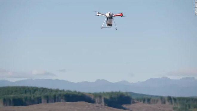 Máy bay không người lái tái canh rừng bị cháy rụi ở Mỹ - Ảnh 2.