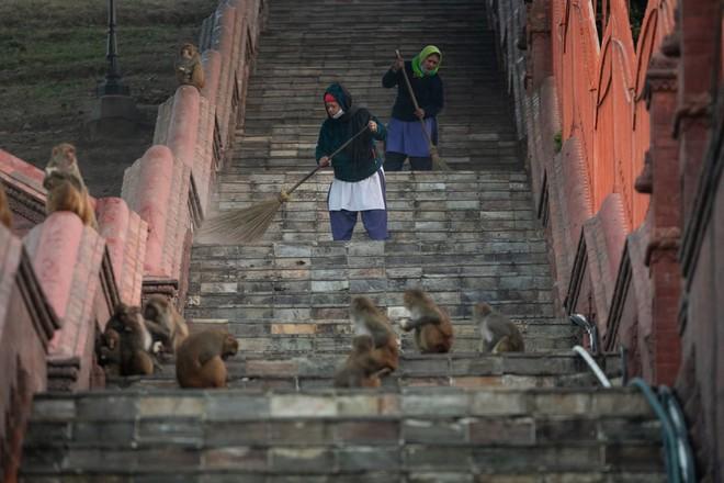 24h qua ảnh: Du khách chiêm ngưỡng thác nước đóng băng ở Ấn Độ - Ảnh 6.
