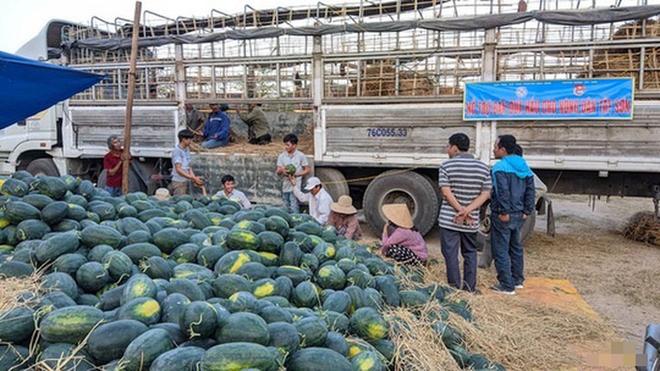 Mua 2 xe dưa hấu của nông dân, thương lái phải nộp 4 triệu đồng tiền bảo kê - Ảnh 1.