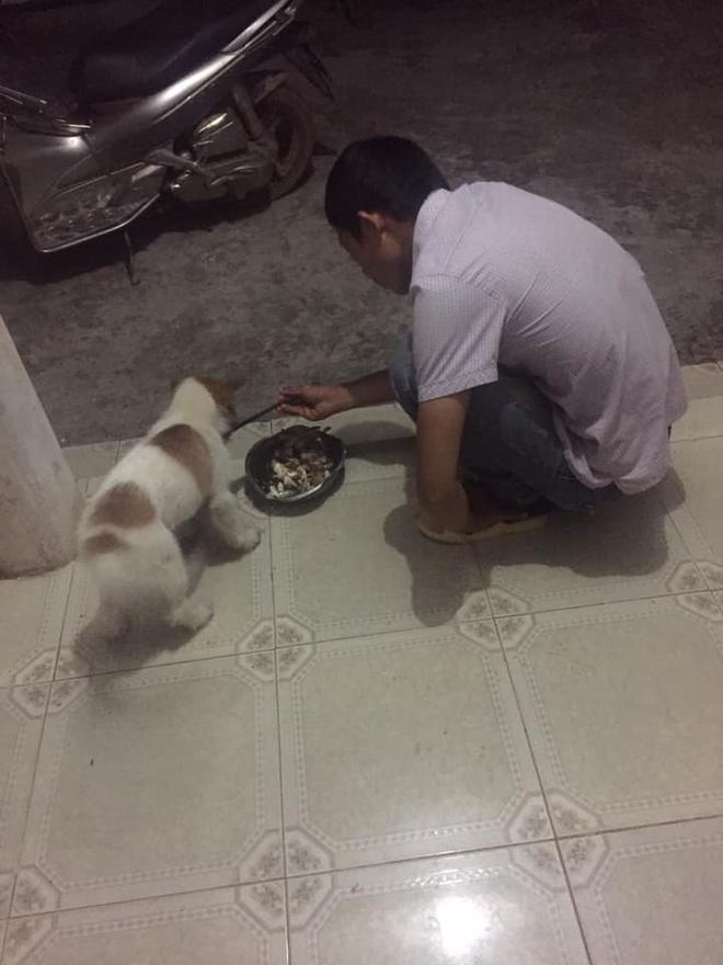 CLIP: Nhặt chó hoang về nuôi bị phản đối kịch liệt, sau 2 tháng, vợ không tin vào cái kết trước mặt - Ảnh 1.