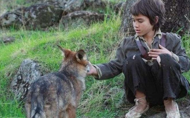 Câu chuyện có thật về 'cậu bé rừng xanh' được bầy sói nuôi dưỡng trong 12 năm và cuộc sống sau khi tái hòa nhập cộng đồng con người