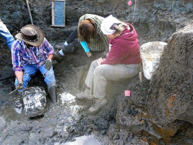 Đang thu hoạch quả chín trong vườn thì thấy hòn đá kỳ lạ, cả gia đình đào lên mới tá hỏa phát hiện ra thứ ẩn giấu bên dưới - Ảnh 3.
