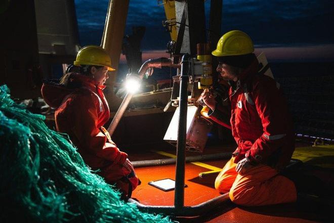 Phát hiện 12 sinh vật chưa từng thấy trên Trái Đất ẩn nấp dưới biển băng - Ảnh 3.