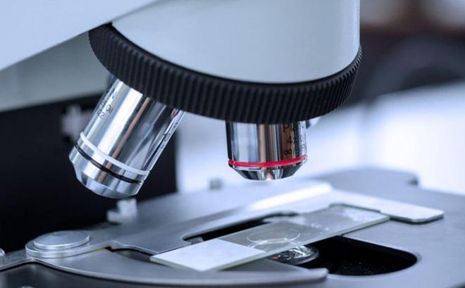 Phát triển thành công kính hiển vi có thể nhìn 'xuyên thấu' qua hộp sọ của bạn một cách an toàn