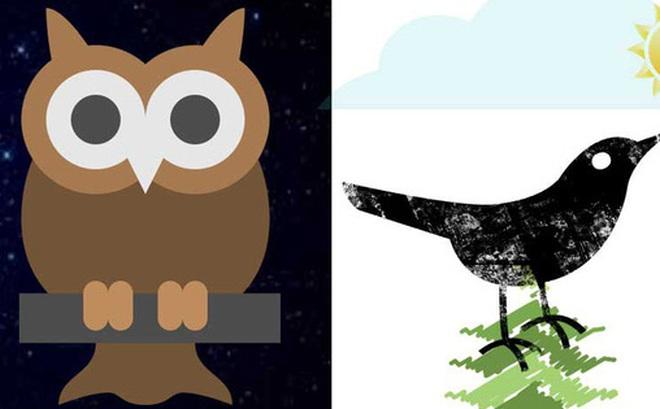 Không chỉ có chim sớm hay cú đêm, con người còn tới 4 kiểu đồng hồ sinh học kỳ lạ khác