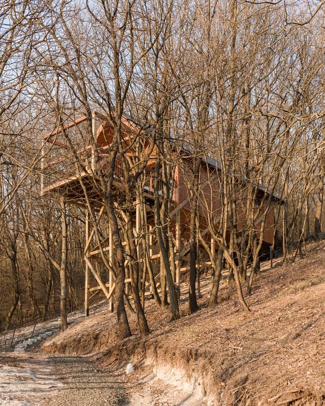 Độc đáo ngôi nhà vô cùng đơn giản, với 12 cái chân, tầm nhìn ra sông - Ảnh 4.