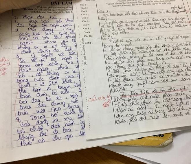 Bài thi với màn hỏi - đáp độc nhất vô nhị của nữ sinh Hà Nội: Dòng chữ gạch chân đỏ hút nghìn like - Ảnh 3.