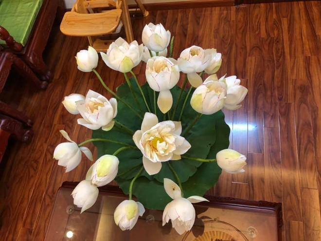Sáng sớm cắm bình hoa đẹp nức nở, cuối ngày người mẹ giận tím mặt vì cảnh tượng con trai gây ra - Ảnh 2.