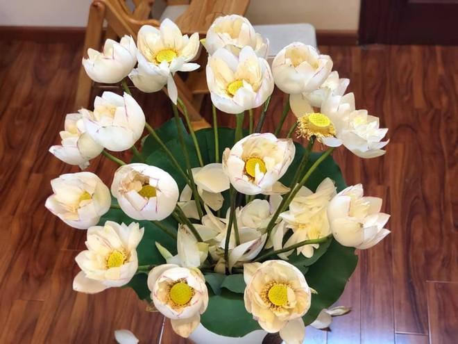 Sáng sớm cắm bình hoa đẹp nức nở, cuối ngày người mẹ giận tím mặt vì cảnh tượng con trai gây ra - Ảnh 3.