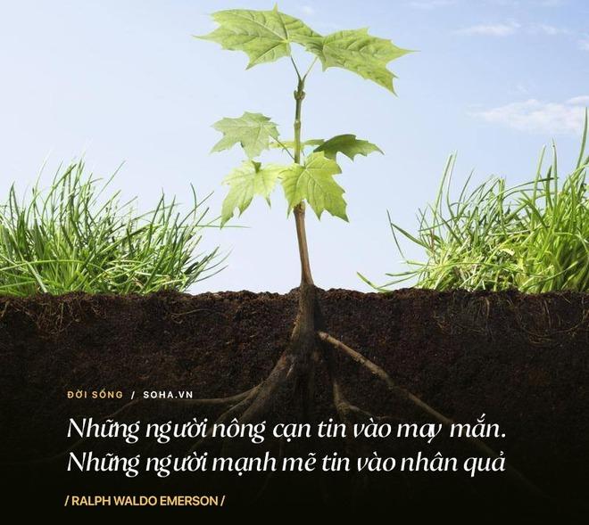 12 lời khuyên từ những người đi trước: Để trưởng thành không đi kèm với sai lầm và thất bại - Ảnh 7.