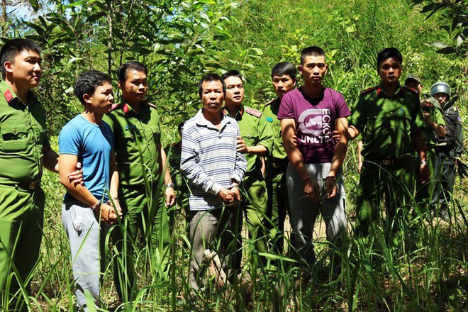 Truy tố kẻ thuê 30 triệu đồng để phá 1 ha rừng - Ảnh 2.