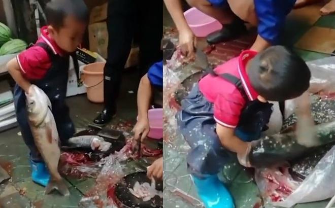 Hình ảnh cậu bé 7 tuổi ngồi giữa chợ sơ chế cá với tay nghề lão luyện gây tranh cãi dữ dội
