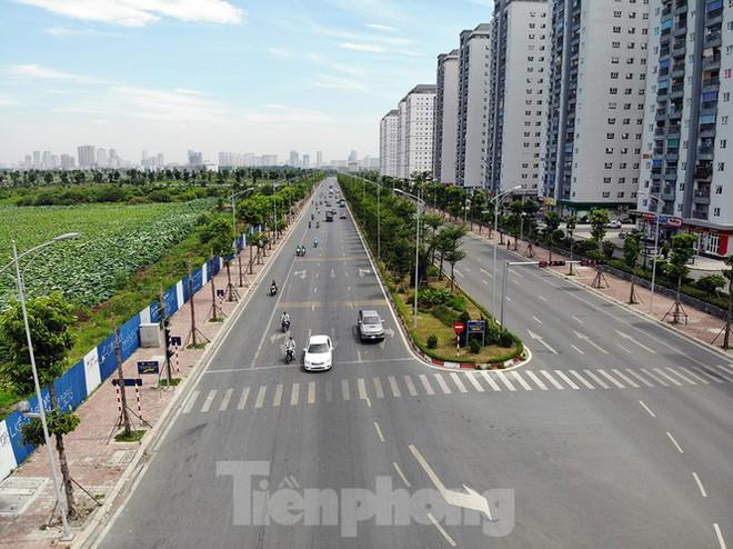 Hàng loạt cây xanh chết khô trên đường nghìn tỷ ở Hà Nội - Ảnh 1.
