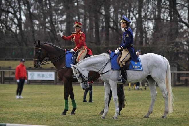 Lực lượng kỵ binh trong thế giới hiện đại - Ảnh 2.