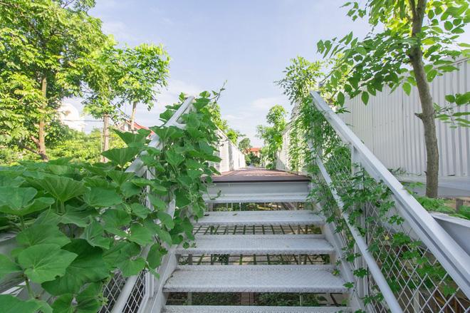 Lớp học giữa không gian cây và hoa tại thành phố Hạ Long - Ảnh 9.