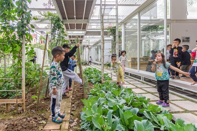 Lớp học giữa không gian cây và hoa tại thành phố Hạ Long - Ảnh 12.