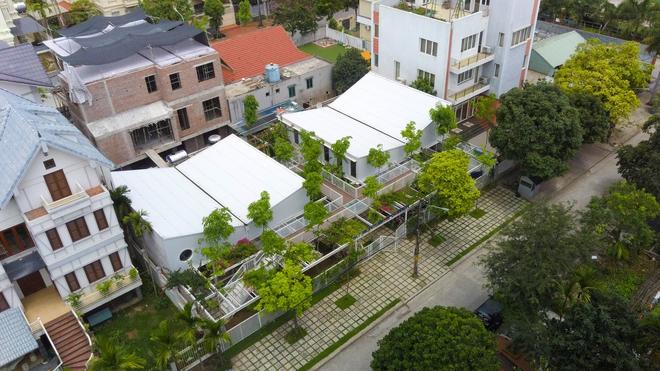 Lớp học giữa không gian cây và hoa tại thành phố Hạ Long - Ảnh 1.