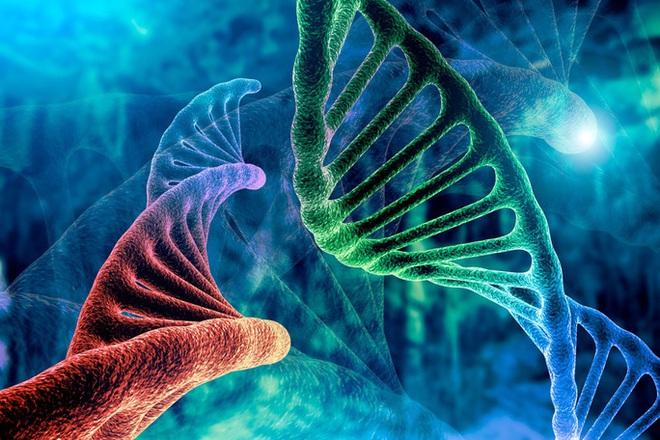 Sự thật về cơ chế chính cơ thể sẽ quyết định ung thư có di căn hay không? - Ảnh 1.