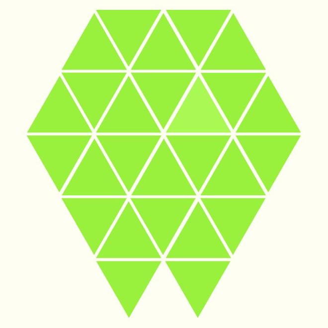 Người rất tinh mắt mới nhìn ra hình tam giác khác màu, bạn có nhìn thấy không? - Ảnh 11.