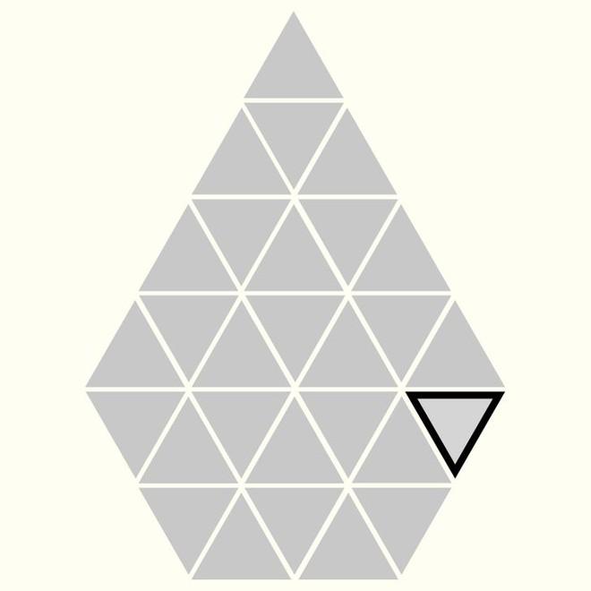 Người rất tinh mắt mới nhìn ra hình tam giác khác màu, bạn có nhìn thấy không? - Ảnh 27.