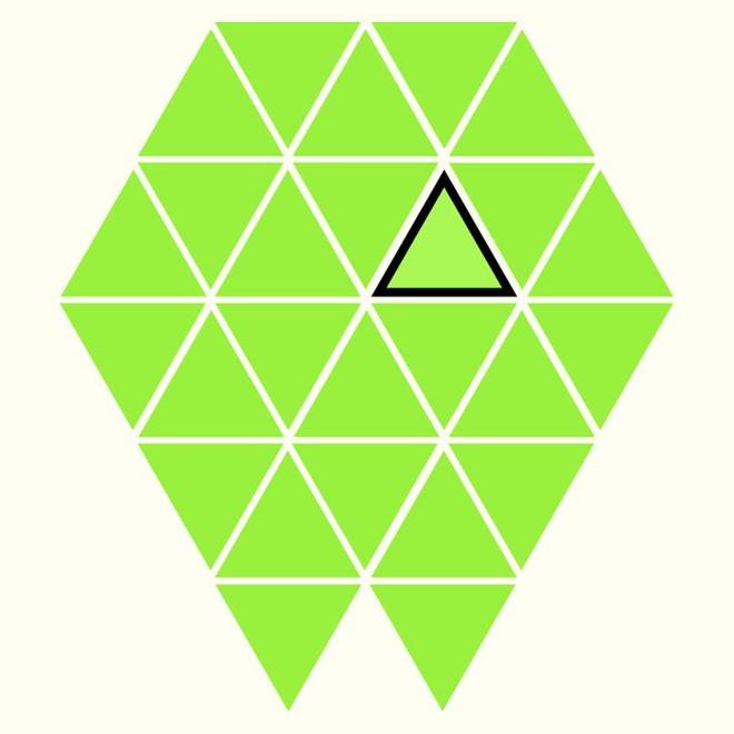 Người rất tinh mắt mới nhìn ra hình tam giác khác màu, bạn có nhìn thấy không? - Ảnh 26.