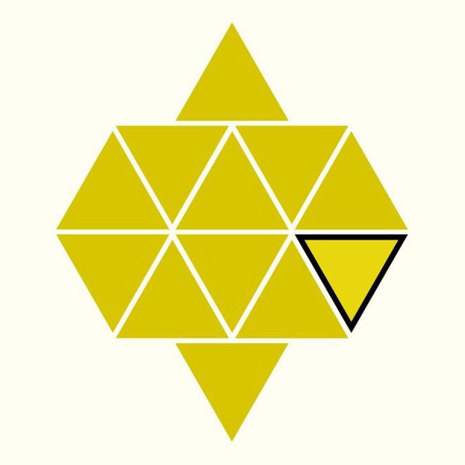 Người rất tinh mắt mới nhìn ra hình tam giác khác màu, bạn có nhìn thấy không? - Ảnh 19.