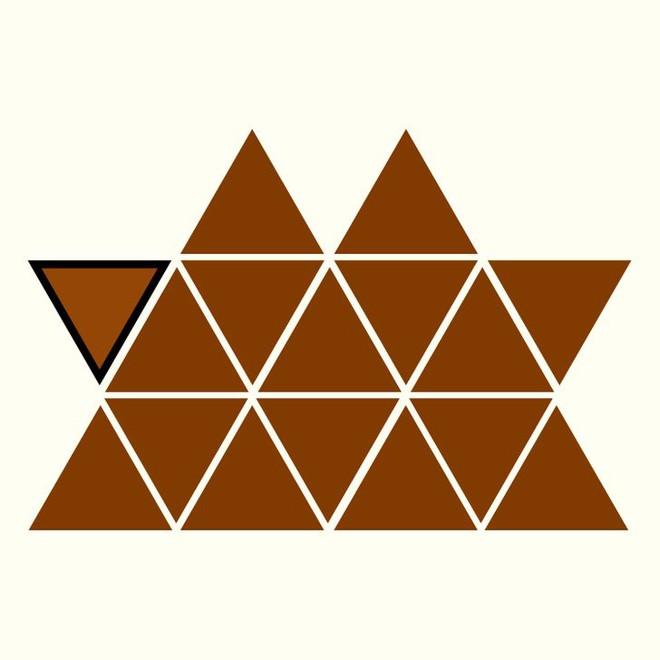 Người rất tinh mắt mới nhìn ra hình tam giác khác màu, bạn có nhìn thấy không? - Ảnh 21.