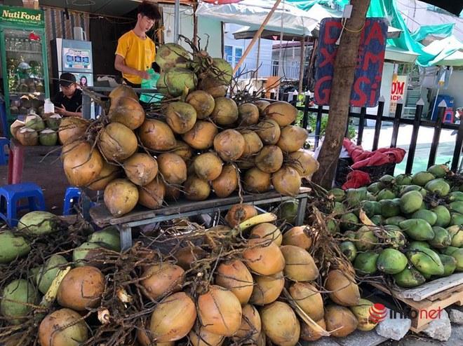 Nắng nóng, nghìn quả dừa bán veo mỗi ngày, thịt lợn không bóng khách - Ảnh 1.