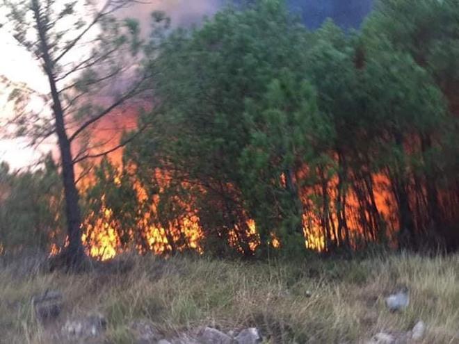 Cả nghìn người dập lửa đám cháy rừng lan qua nhiều xã ở Nghệ An - Ảnh 2.