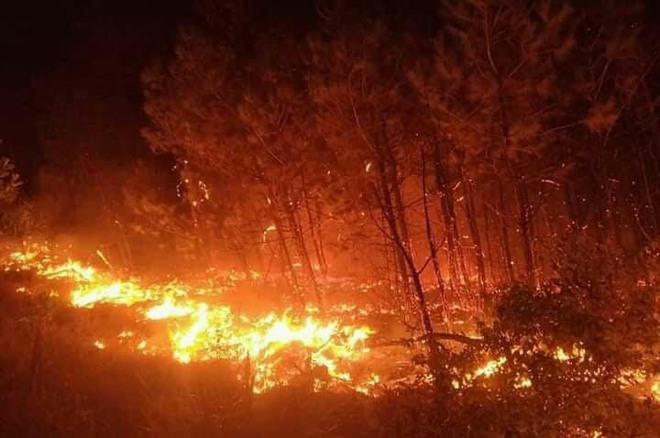 Cả nghìn người dập lửa đám cháy rừng lan qua nhiều xã ở Nghệ An - Ảnh 4.