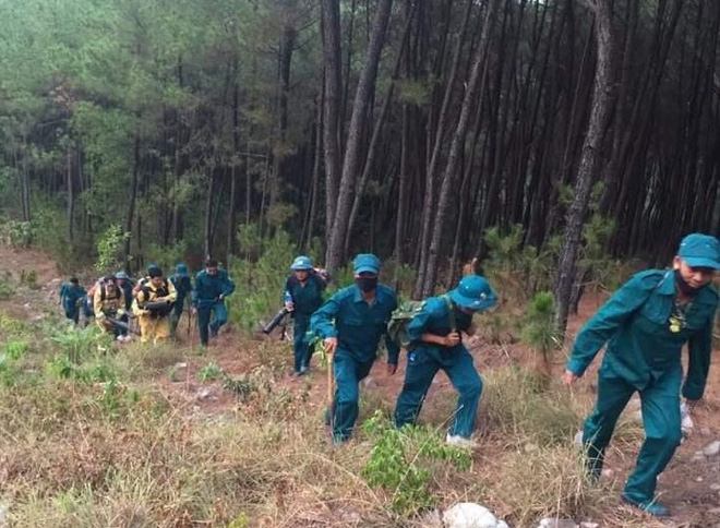 Cả nghìn người dập lửa đám cháy rừng lan qua nhiều xã ở Nghệ An - Ảnh 3.